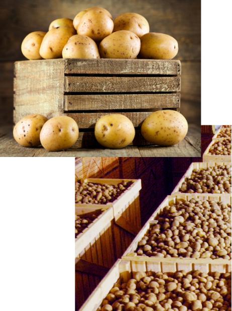 cajas-patatas